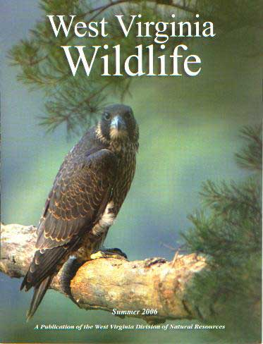 wv-wildlife-cover---small